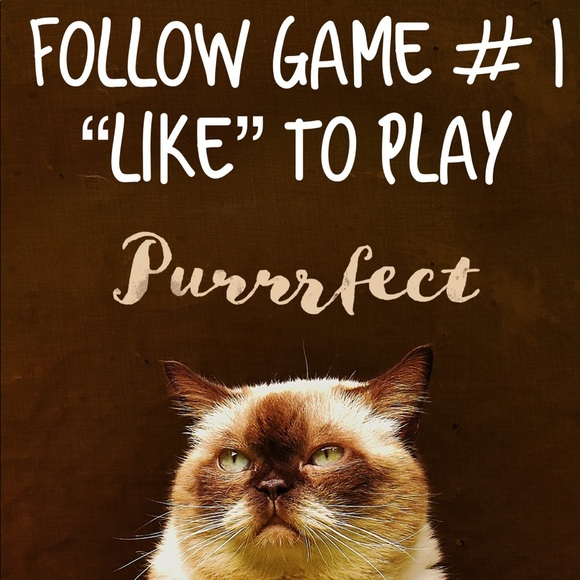 🐈🐾 Follow Game 🐈🐾 Like to play tag & share